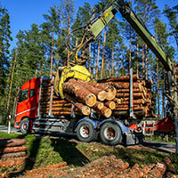 Forest Equipment & Supplies