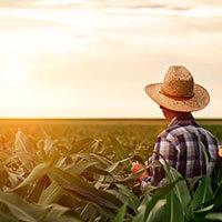 Crop Services