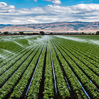 Irrigation & Water